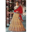 Festival Wear Brown & Red Net Lehenga Choli - 75257