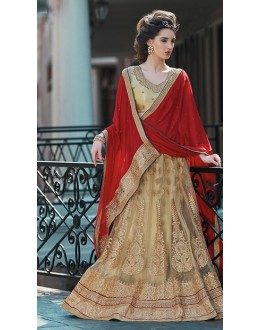 Designer Brown & Maroon Net Lehenga Choli - 75260