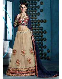 Festival Wear Brown Net Lehenga Choli - 81287