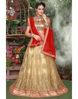 Cream Colour Net Embroidery Lehenga Choli - 19295