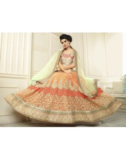 Designer Orange Net Lehenga Choli - 19539