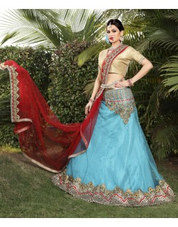 Sky Blue Colour Net Embroidery Lehenga Choli - 19747