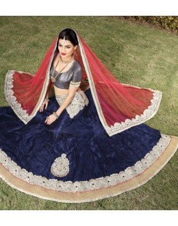 Traditional Navy Blue Net Lehenga Choli - 19749