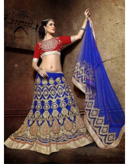 Bridal Wear Blue Net Lehenga Choli - 19765