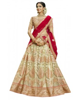 Traditional Wear Beige Net Lehenga Choli - 23006
