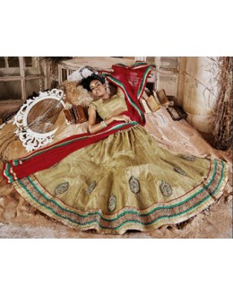 Designer Golden & Red Square Net Lehenga Choli - QUEEN4387-B