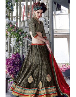 Ethnic Wear Black Square Net Lehenga Choli - QUEEN4393-A