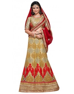 Traditional Beige Net Lehnega Choli - NAKASHTRA6304