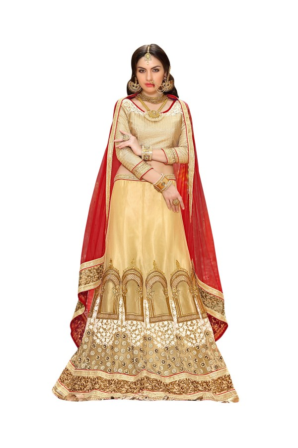 Ethnic Wear Net Chiku Lehenga Choli - GOLDEN LEAF5308