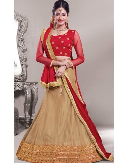 Designer Tan Brown & Red Net Lehenga Choli - 72546