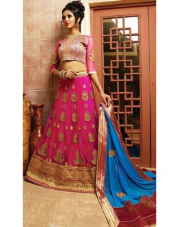 Traditional Pink & Blue Net Lehnega Choli - 72799