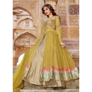 Party Wear Green & Tan Brown Net Anakali Suit - 73090