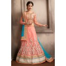 Ethnic Wear Pink & Blue Net Lehenga Choli - 74047