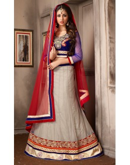 Festival Wear Grey & Red Net Lehenga Choli - 74066