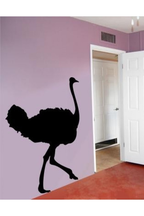 Wall Sticker of Ostrich