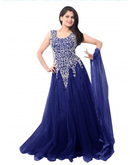 Party Wear Net Blue Gown - EBSFSK234014B
