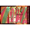 Bollywood Replica - Party Wear Pink Border Work Saree - 9079-D