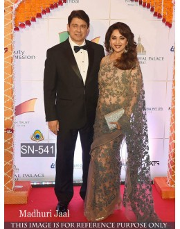 Bollywood Replica - Madhuri Dixit In Designer Grey Net Saree - SN-541