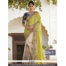 Bollywood Replica - Designer Green & Beige Saree - SN-1