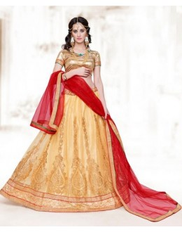 Designer Golden Net Lehenga Choli - 16511