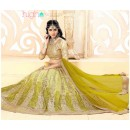 Designer Light Green Net Lehenga Choli - 18971