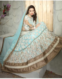 Designer Multi-Colour Net Lehenga Choli - 19511