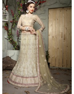 Ethnic Wear Cream Net Lehenga Choli - 19518
