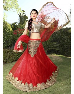 Traditional Red Net Embroidery Lehenga Choli - 19743