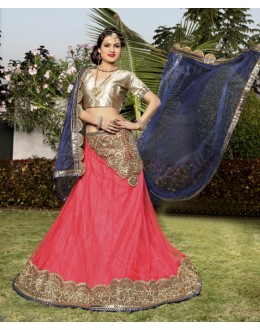 Traditional Blue Net Embroidery Lehenga Choli - 19745