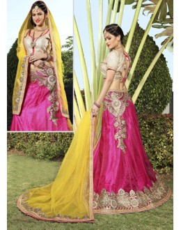 Ethnic Wear Pink Net Lehenga Choli - 19746