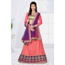 Traditional Wear Pink Designer Net Lehenga Choli - 19793