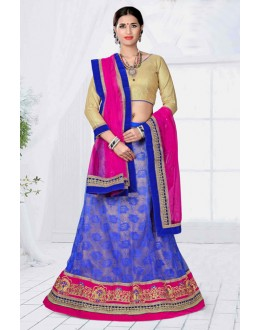 Traditional Wear Blue Designer Net Lehenga Choli - 19797