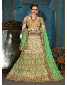 Traditional Wear Beige Net Lehenga Choli - 21938