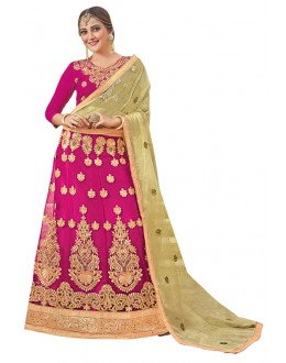Traditional Wear Pink Net Lehenga Choli - 19005