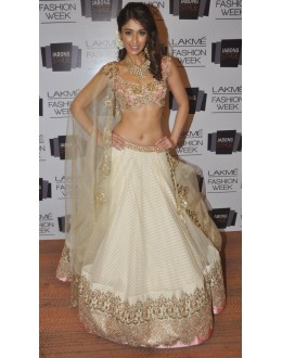 Bollywood Replica - Ileana D'Cruz White & Gold Net Lehenga Choli with Dupatta - 301 (SAM-182)
