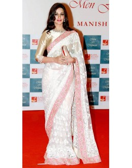 Bollywood Replica - Sonali Bendre Off White Color Net Saree - 296 (SAM-182)