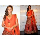 Esha Gupta Bollywood Designer Red Bridal Lehenga - 5160​