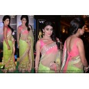Bollywood Replica - Shriya Saran Green Net Saree With Patch Border Work Party Wear Saree - TM-12 ( TM-1 )