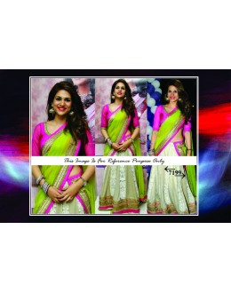 Bollywood Replica -  Wedding Wear Multi-Colour Embroidered Lehenga Choli  - 7199