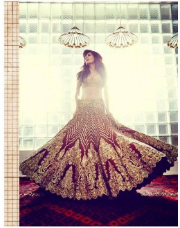 Bollywood Replica - Bridal Maroon & Beige Lehenga Choli - S363