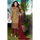Ayesha Takia In Dark Beige Cotton Salwar Suit  - Pandadi10