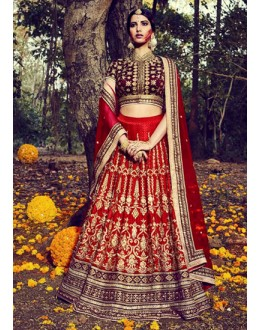 Wedding Wear Red Lehenga Choli - NAKKASHI-10014