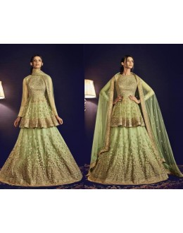 Traditional Pista Green Net Embroidered Lehenga Choli - 5064