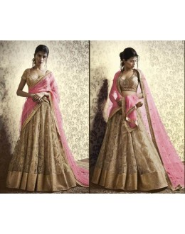 Wedding Wear Pink & Beige Net Embroidered Lehenga Choli - 5065