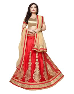 Net Red Embroidery Lehenga Choli - SAI NX5111